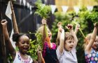 Kids in a vegetable garden with carrot